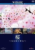 桜~SAKURA~ V-music01 [DVD]