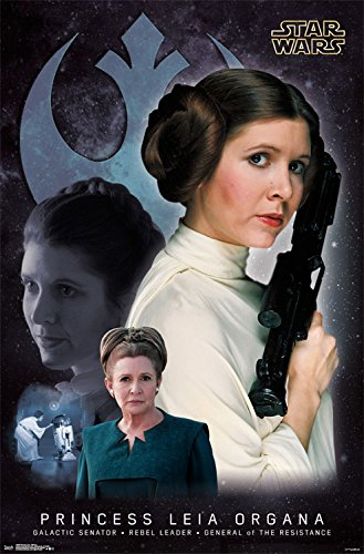 Star Wars Cartel de la Princesa Leia de Memoria: Amazon.es ...