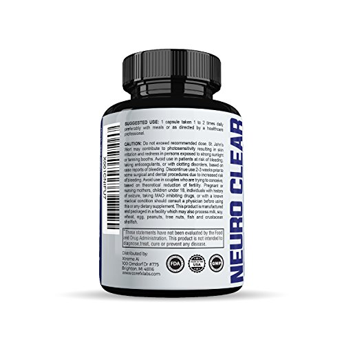 Brain Function Support by CoreFX Labs Brain booster for Memory, Clarity and Focus Mental Focus Nootropic Brain Supplement with Ginko Biloba, St Johns Wort, Bacopa Monnieri & More
