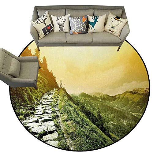 (Inspirational,Floor Mat Entrance Doormat D48 Mountain Valley Path of Life Alone Zen Dawn Summer Landscape Bathroom Rugs Olive Green Pale Yellow)
