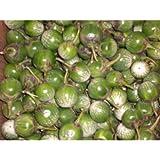 Thai Eggplant - Avg 10 Lb Case