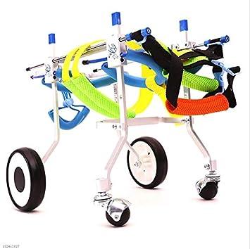 La silla de ruedas para perros, el ciclomotor para mascotas, el perro discapacitado,