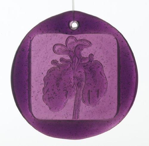 (Kitras 3-Inch Iris Suncatcher, Amethyst)
