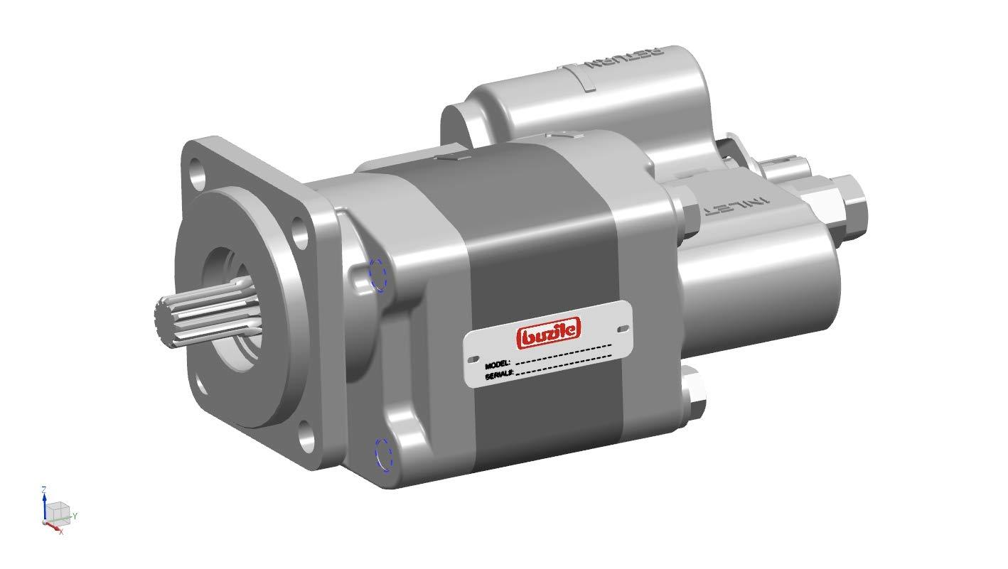 MH102G-20-LMS 3089310418 WAP102G Buzile Dump Pump BG102-20LMS TKD400 Replacement: G102-1-2.0L-4S S2LD-15-2BPRL DMD-400-20-ZL-200 GP-102-LMS-20 S3LD-15-2BRPL CH102120CCW S-E108 3089310077