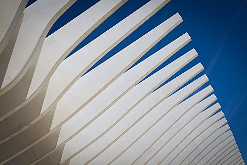 c Face Mounted Prints Modern Abstract Fan Architecture Blades Sky Print 24 x 36. Worry Free Wall Installation - Shadow Mount is Included. ()