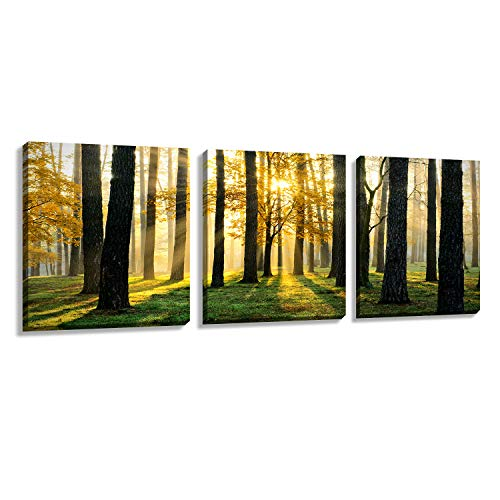 Nuolan Art Canvas Prints 3 Panels Framed Ready to Hang Modern Landscape Canvas Wall Art, Oil Painting Print Wall Decoration- P3L3040-004