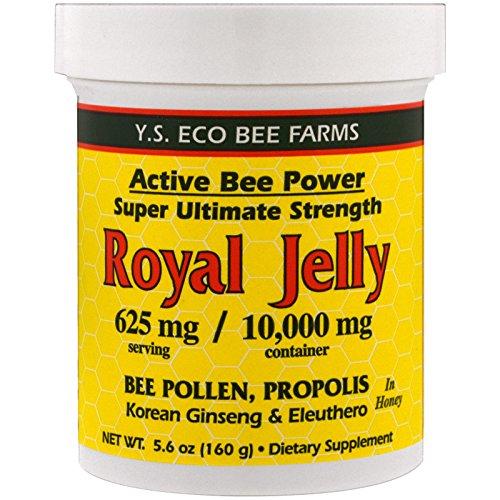 YS Royal Jelly/Honey Bee - Fresh Royal Jelly+, 10000mg, 5.6 fl oz liquid by YS Royal Jelly/Honey Bee