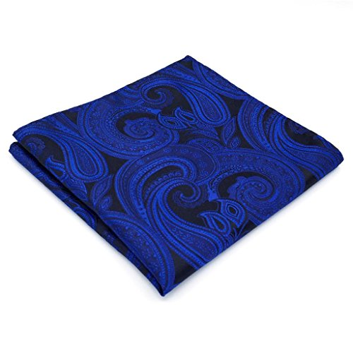 SHLAX&WING Mens Necktie Paisley Blue Navy Silk Tie for Men