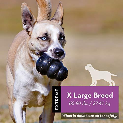 KONG - Extreme Dog Toy - Caucho natural más resistente, Negro - Divertido para masticar, perseguir y buscar - para perros extra grandes