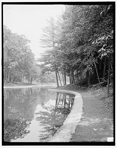 Vintography 8 x 10 Reprinted Old Photo Mirror Lake Forest Park Springfield Mass. 1910 Detriot Publishing co. 84a by Vintography
