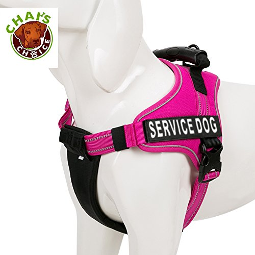 Chai's Choice Service Dog Vest Harness Best Truelove Model with 2 Reflective Service Dog Patches and Sturdy Handle. Matching Padded 3M Reflective Leash Available (Small, Fuchsia)