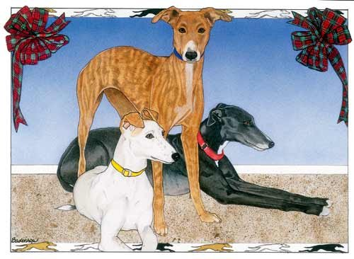 Greyhound Christmas Cards Trio : 10 Holiday Cards with Red Envelopes - ADORABLE!