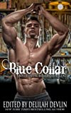 img - for Blue Collar (A Boys Behaving Badly Anthology) (Volume 2) book / textbook / text book