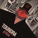 Das Cabinet des Dr. Caligari (Gatefold black 2LP+CD)