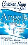 img - for Chicken Soup for the Soul: Angels Among Us: 101 Inspirational Stories of Miracles, Faith, and Answered Prayers book / textbook / text book