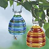 Wenko 71710900 wasp trap, glass-coloured set of 2