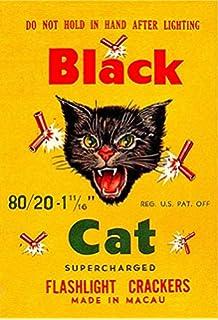 Amazon com: Fireworks Firecracker Black Cat Poster Posters
