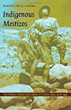 Indigenous Mestizos: The Politics of Race and Culture in Cuzco, Peru, 1919–1991 (Latin America Otherwise)