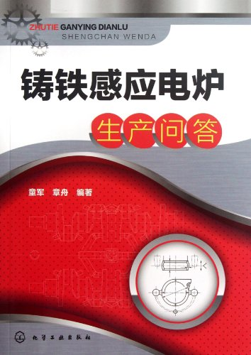 Cast Iron Induction Electric Furnace Production Questions and Answers (Chinese Edition)