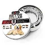best Dog Flea Treatment Collar