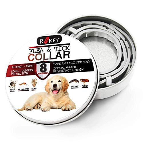ROKEY Dog Flea and Tick Collar - 8 Months Flea Prevention Collar for Dogs - Adjustable, Waterproof and Natural Flea and Tick Control Collar - One Size Fits ()