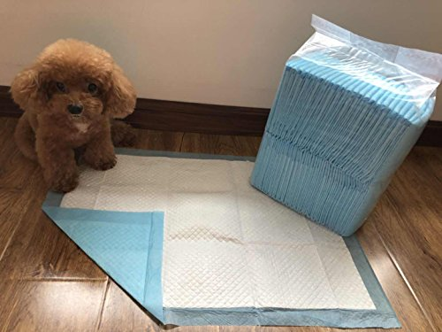 50 – Dog Puppy 17×24 Pet Housebreaking Pad, Pee Training Pads, Underpads For Sale