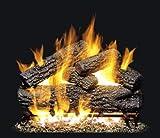 Peterson Real Fyre 24-inch Post Oak Log Set With Vented Natural Gas G4 Burner – Match Light For Sale