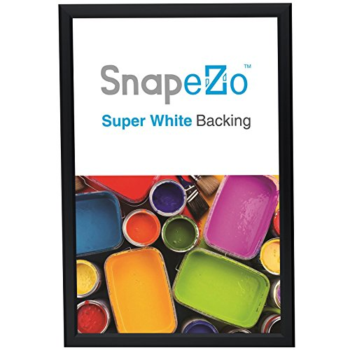 "SnapeZo Poster Frame 18x24 Inches, Black 1.25"" Aluminum Prof"