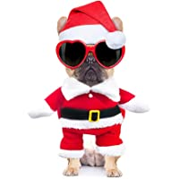 Christmas Santa Claus Pet dog cosplay clothes for Poodle Bichon Frise small dogs-S