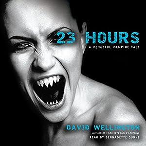23 Hours Audiobook