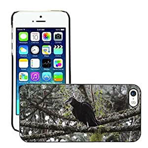 GoGoMobile Slim Protector Hard Shell Cover Case // M00123418 Vulture Bird Trunk On Top Forest // Apple iPhone 5 5S 5G