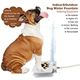 Dog Water Fountain - MATOP Step-On Dog Water Dispenser Upgraded Version Outdoor Doggie Drinking Fountain with 40'' Hose
