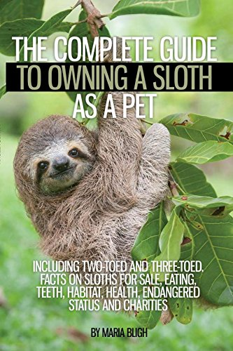 The Complete Guide to Owning a Sloth as a Pet including Two-Toed and Three-Toed. Facts on Sloths for Sale, Eating, Teeth, Habitat, Health, Endangered Status and Charities]()
