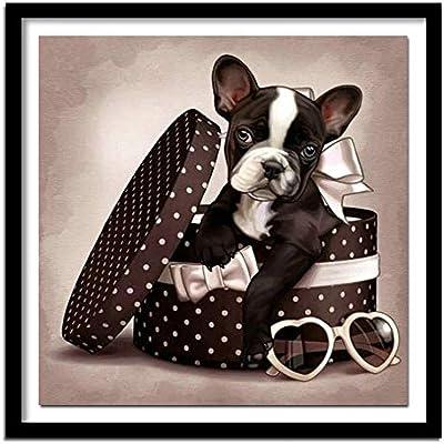 Caja de regalo de bricolaje del perro 5D costura diamante pintura ...