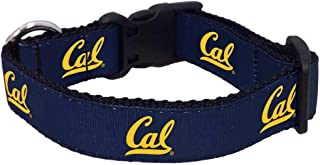 product image for NCAA California Golden Bears Dog Collar (Team Color, Large)