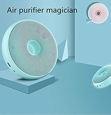 GXHGRASS Purificador de Aire, concentrador de oxígeno portátil ...