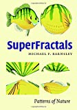 img - for SuperFractals book / textbook / text book