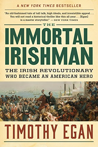 The Immortal Irishman: The Irish Revolutionary Who Became an American Hero cover