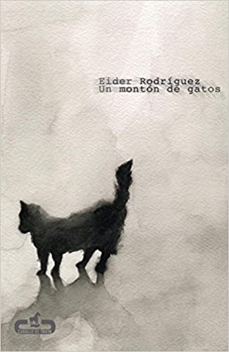 Un monton de gatos / A lot of cats (Spanish Edition): Eider Rodriguez: 9788496594609: Amazon.com: Books