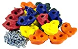 20 Extra Large Deluxe Rock Climbing Holds - with Mounting Hardware for up to 2'' Installation