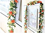 Meiliy 2 Pack 8.2 FT Fake Rose Vine Flowers Plants Artificial Flower Home Hotel Office Wedding Party Garden Craft Art Decor Champagne ML-021c