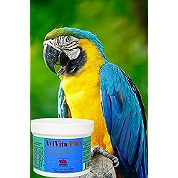 AviVita Plus Multivitamin Supplement (4 Ounce)