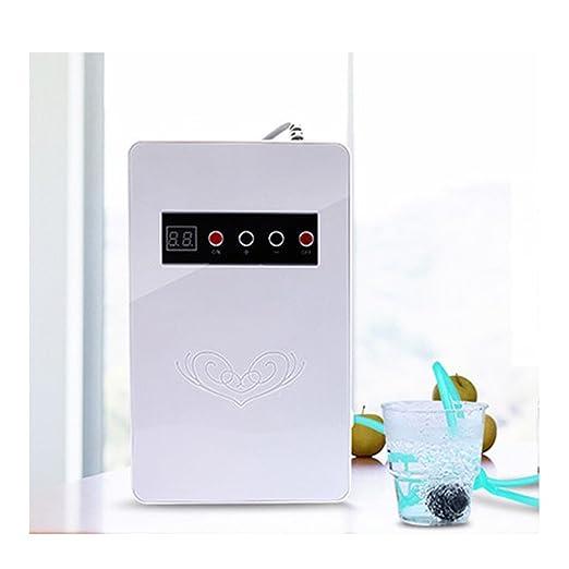 La lavadora del hogar, purificador automático del instrumento del esterilizador automático 16 * 5.5 * 26.5: Amazon.es: Salud y cuidado personal