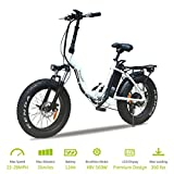 vtuvia Folding Electric Bike 20 Inch Fat Tire E-Bike for Adults with 500W Motor and 48V 12AH Removable Lithium-Ion Battery City Mountain Electric Bicycle for Men&Women(White)