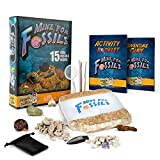 Discover with Dr. Cool Mine for Fossils Dig Kit - Excavate 15 Real Fossil Specimens Including Dinosaur Bones, Mosasaur & Shark Teeth - Great Stem Fossil Kit for Boys & Girls Interested in Dinosaurs