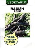 【種子】 RADISH 黒長大根 藤田種子