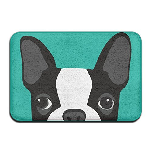 Boston Garden Rug - AfagaS Funny Cartoon Boston Terriers Big Eyes Black And White Pattern Rectangle Front Welcome Door Mat Outdoor Indoor Entrance Doormat Durable Heat-Resisting Non-Slip Rug Size 18x30 Inches