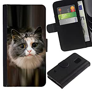 iKiki Tech / Cartera Funda Carcasa - Cute Cat Feline Pet Furry Grey Longhair - Samsung Galaxy S5 V SM-G900
