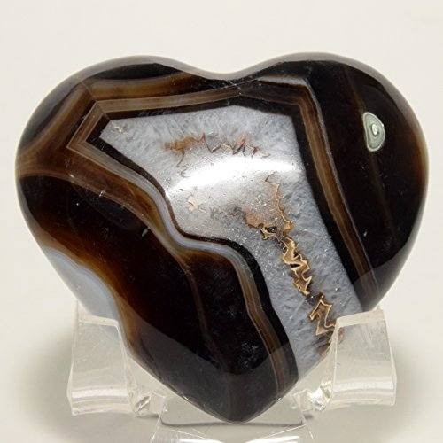 54mm Black Brown White Agate Puffy Heart Colorful Banded Natural Polished Crystal Sparkling Chalcedony Mineral Love Stone Heart - India + Acrylic Display Stand