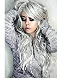 28'' Long Wigs Body Wave Wavy Wigs for Women Cosplay Synthetic Silver Gray Hair Goddess Style